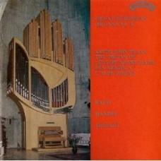 Great European Organs No. 6: L'Eglise Notre Dame des Neiges a L'Alpe D'Huez